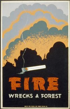 "A poster of a forest fire and a cigarette, with the words ""Fire wrecks a forest."""