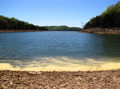 Center-hill-lake-pollen-tn1
