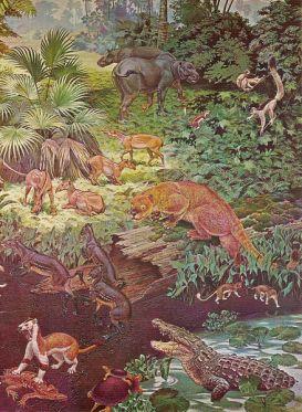 439px-Eocene