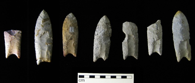 Clovis points from the Rummells-Maske Site, 13CD15, Cedar County, Iowa, from the Iowa Office of the State Archaeologist collection. CC-BY-SA-3.0; Released under the GNU Free Documentation License.